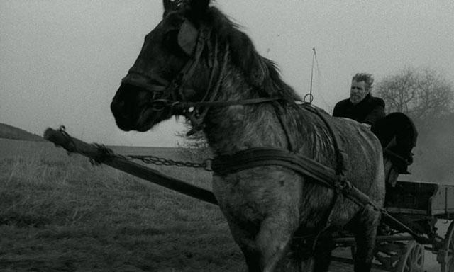 Turin Horse - Bela Tarr